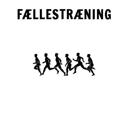 feallestraining